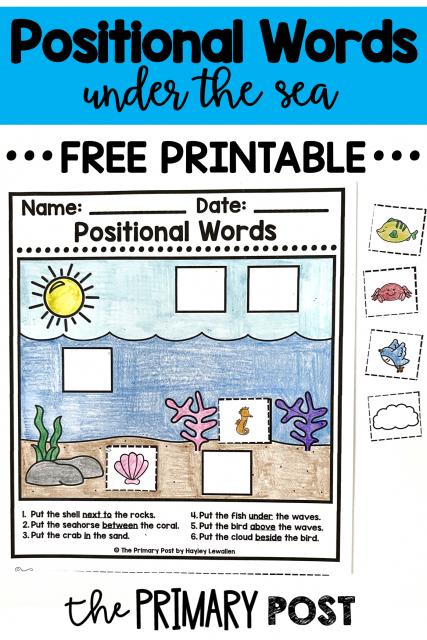 Positional Words FREEBIE